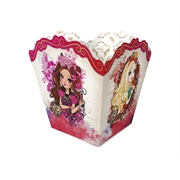 (AA)CACHEPOT PP EVER AFTER HIGH (6364)- 08UN